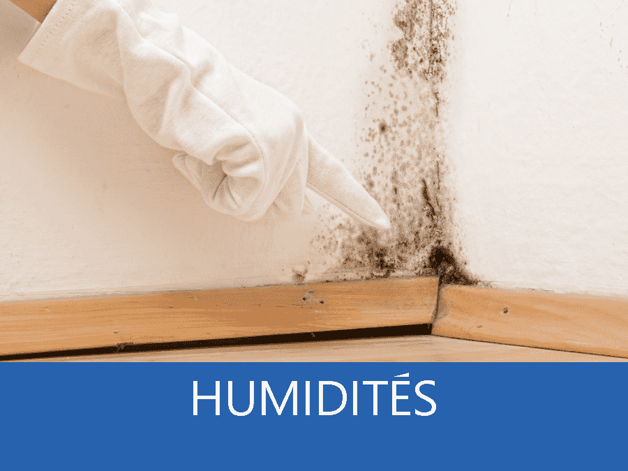 expertise humidité 59, expert humidité Lille, cause moisissure Le Nord, solutions humidité Tourcoing,
